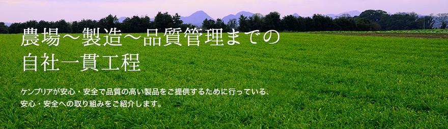 農場~製造~品質管理までの自社一貫工程